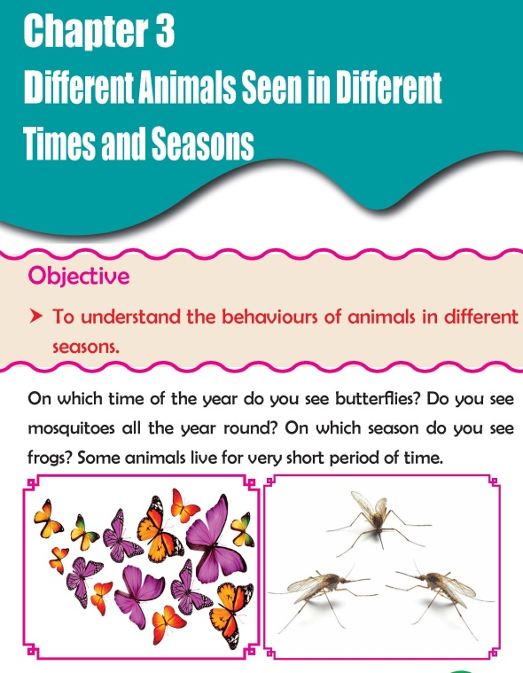 Grade 3 Science Lesson 3 Different Animals Seen In Different Times And Seasons