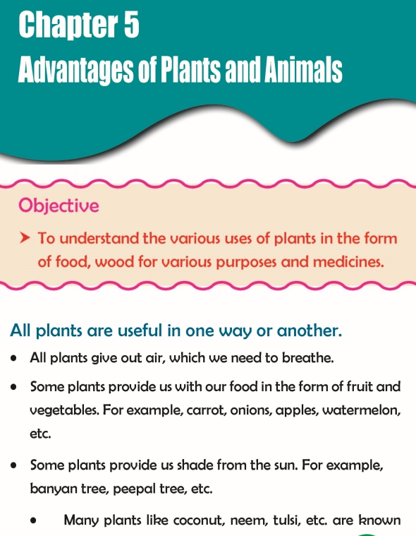 Grade 3 Science Lesson 5 Advantages Of Plants And Animals