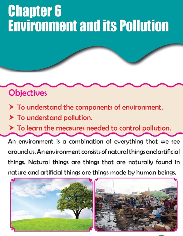 Grade 3 Science Lesson 6 Environment And Its Pollution