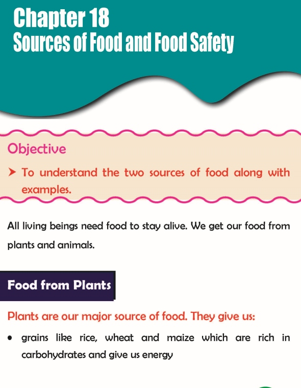 Grade 3 Science Lesson 18 Sources Of Food And Food Safety
