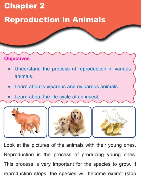 Grade 4 Science Lesson 2 Reproduction in Animals