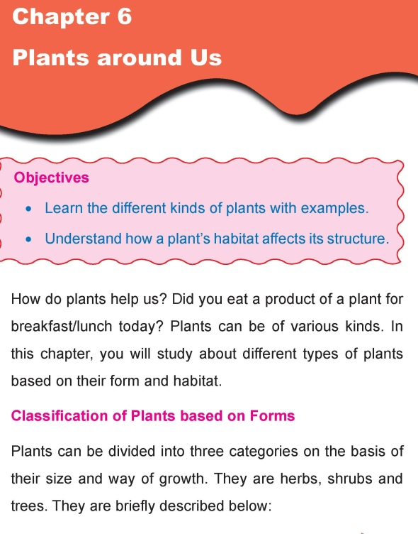 Grade 4 Science Lesson 6 Plants around Us