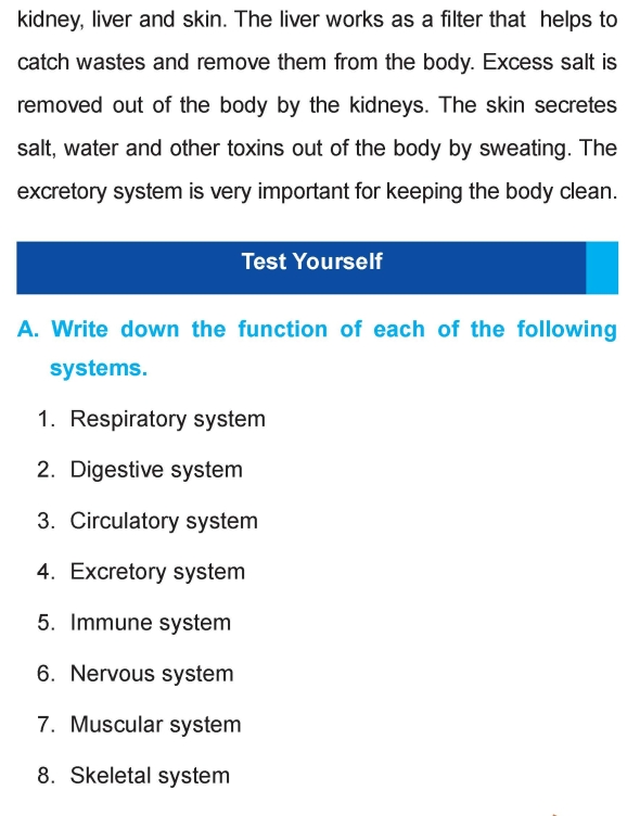 Grade 4 Science Lesson 16 Human Body | Primary Science