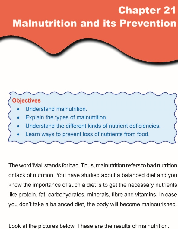 Grade 5 Science Lesson 20 Balanced Diet