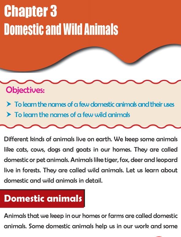 Grade 2 Science Lesson 3 Domestic and Wild Animals