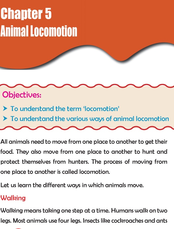 Grade 2 Science Lesson 5 Animal Locomotion