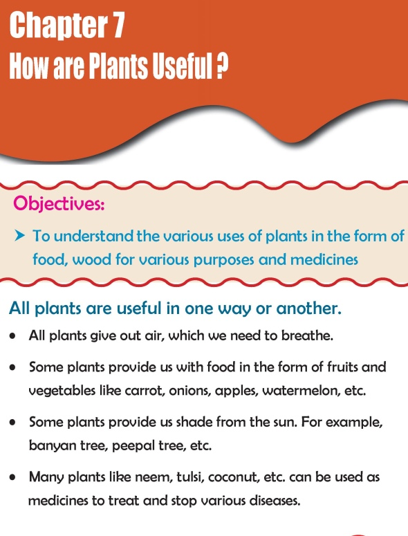 Grade 2 Science Lesson 7 How are Plants Useful ?