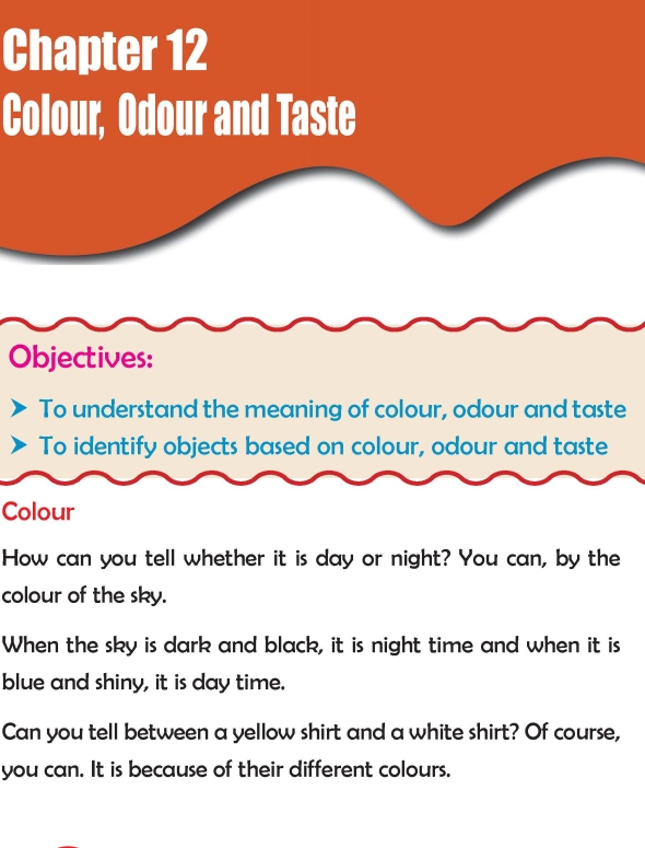 Grade 2 Science Lesson 12 Colour, Odour and Taste